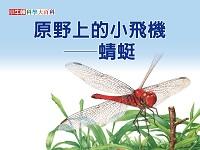 原野上的小飛機 [有聲書]:蜻蜓