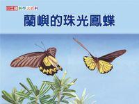 蘭嶼的珠光鳳蝶 [有聲書]