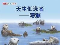 天生仰泳者 [有聲書]:海獺