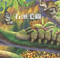 石頭毛蟲:自我認知的學習