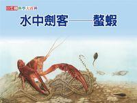 水中劍客 [有聲書]:螯蝦
