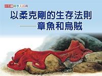 以柔克剛的生存法則 [有聲書]:章魚和烏賊