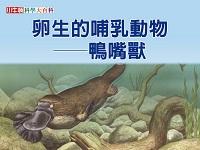 卵生的哺乳動物 [有聲書]:鴨嘴獸