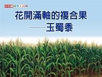 花開滿軸的複合果 [有聲書]:玉蜀黍