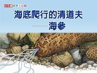海底爬行的清道夫 [有聲書]:海參