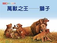 萬獸之王 [有聲書]:獅子