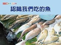 認識我們吃的魚 [有聲書]