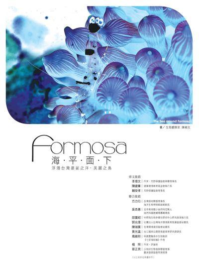 Formosa海.平.面.下:浮潛台灣婆娑之洋, 美麗之島