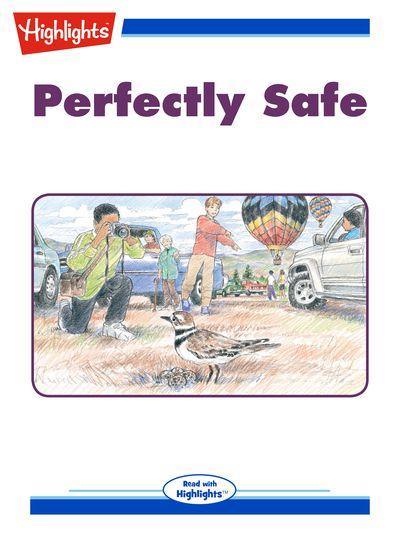 Perfectly safe [有聲書]