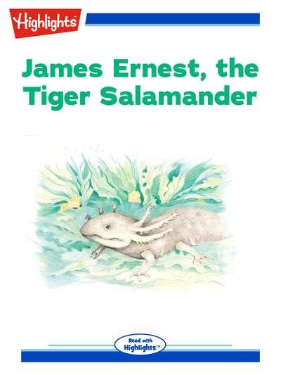 James Ernest, the tiger salamander [有聲書]
