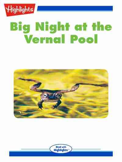 Big night at the vernal pool [有聲書]