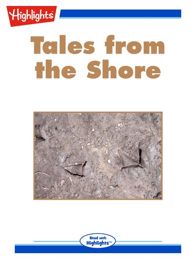 Tales from the shore [有聲書]