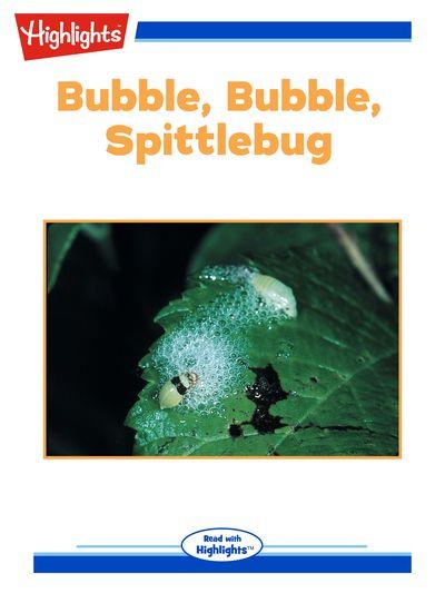 Bubble, bubble, spittlebug [有聲書]
