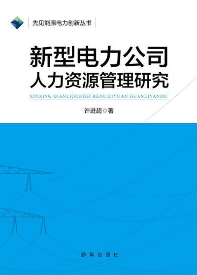 新型電力公司人力資源管理研究