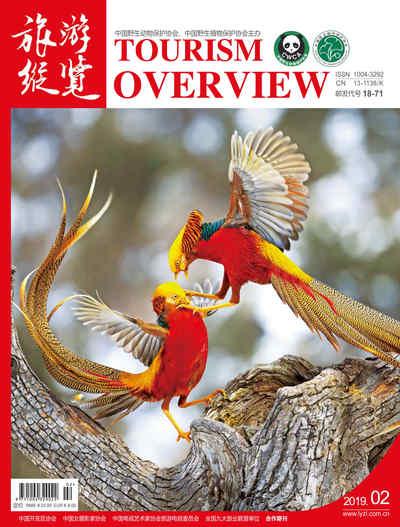 旅遊縱覽 [2019年2月刊 總第288期]:舊語今聲賀新年