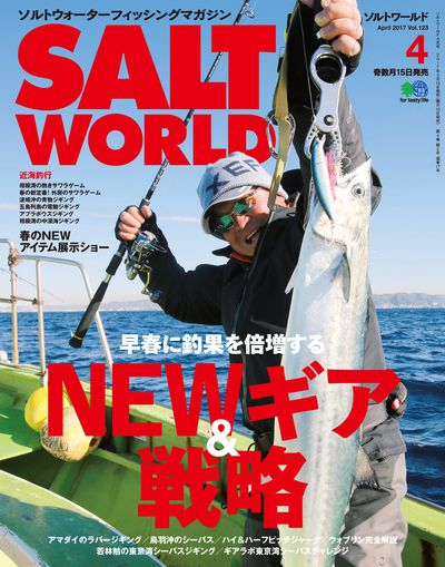 Salt world [April 2017 Vol.123]:NEWギア&戦略
