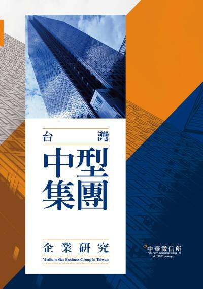 台灣中型集團企業研究. 2019年版