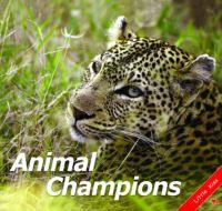 Animal champions