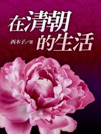 在清朝的生活. 卷二