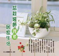 盆栽裝飾綠意居家生活