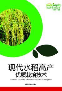 現代水稻高產優質栽培技術