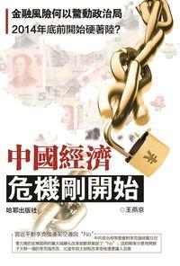 中國經濟:危機剛開始