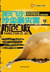 滿天飛沙:沙塵暴災害的防範自救