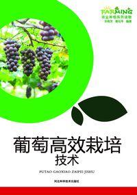 葡萄高效栽培技術